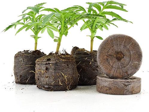 (10 Count) Jiffy-7 Peat Pellets 36mm
