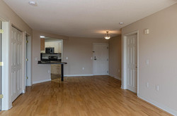 Apartment Entrance to Living Area