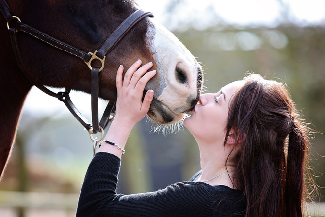Saying Goodbye Part 3 - Remembering Your Horse