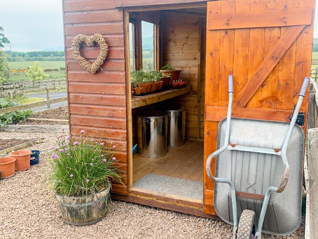 This Week In The Kitchen Garden : The Potting Shed Relocation