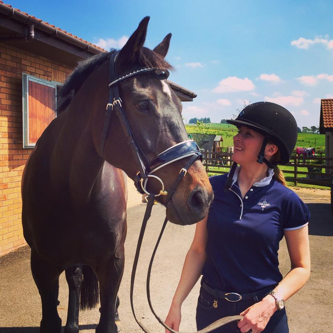 5 Things to Think About When Sending Your Horse to Boarding School