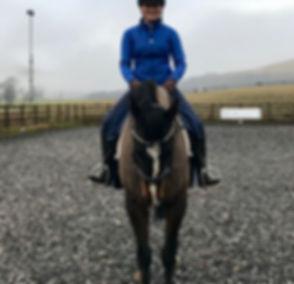 Dressage Training at KA Equestrian