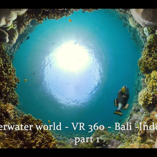 Bondalem Beach Club underwater