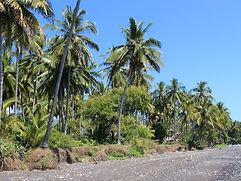 dijual tanah di Bali utaa