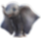 disney_s_dumbo__1____transparent__by_cam