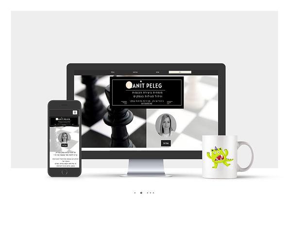 אתר Wix תדמיתי לאילנית פלג יעוץ וליווי עסקי