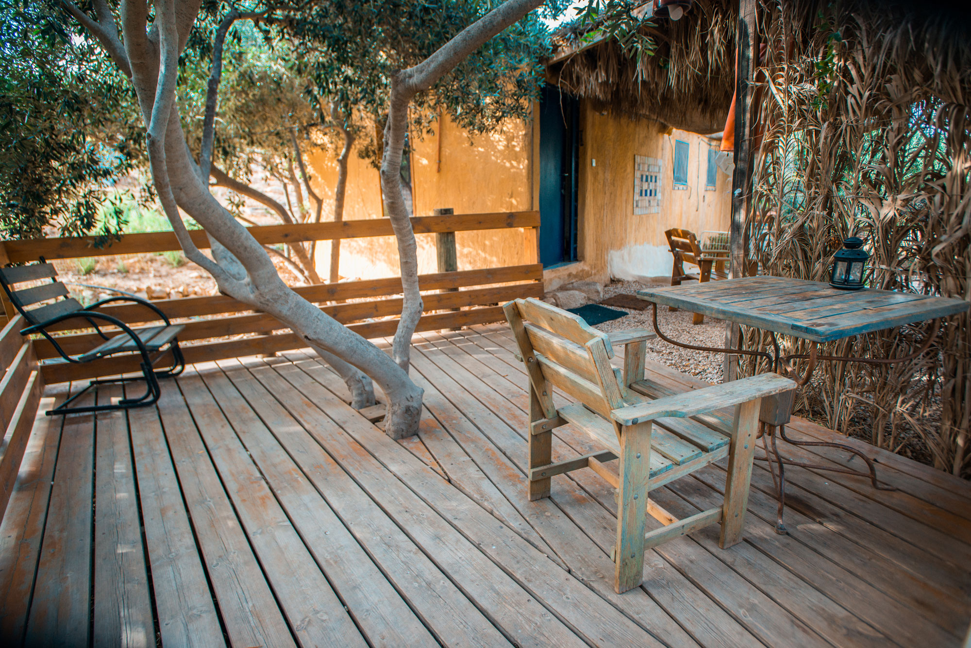 Carmey Avdat-Marva Cabin