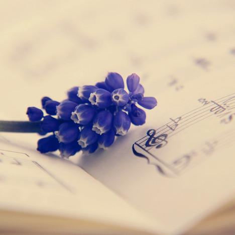 מוזיקה קלאסית קלה