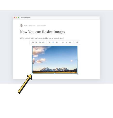 איך לשנות גודל ולערוך תמונה בבלוג של וויקס?