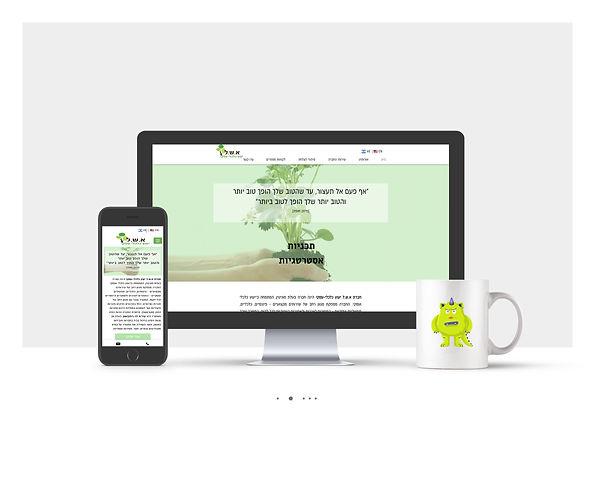 אתר Wix עבור א.ש.ל ייעוץ כלכלי עסקי