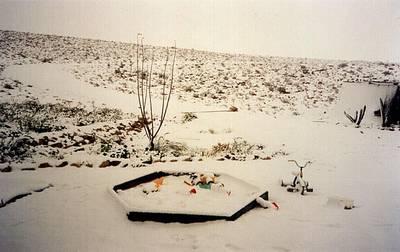 שלג בהר הנגב וחוות כרמי עב