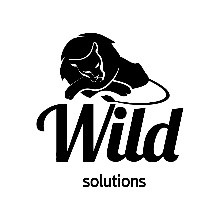 Wild  solutions
