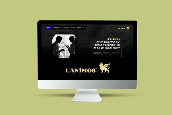 אתר תדמיתי עבור חברת ייעוץ
