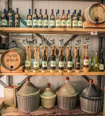 Basic Tour + Wine Tasting