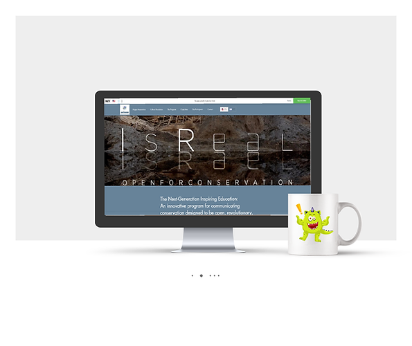 אתר Wix תדמיתי עבור תוכנית שימור אתרים