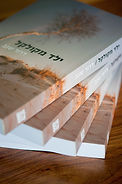 זיוית כתבה סקירה יפה וזה יופי ונעים לקרוא.