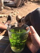 Trekking Israel - מטיילים מספרים מטיבי לכת