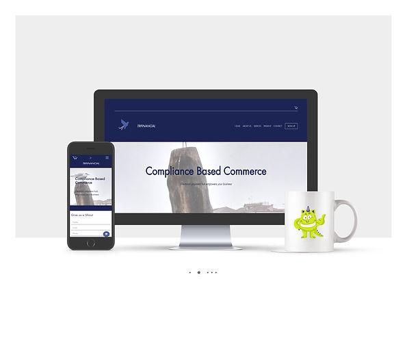 אתר Wix תדמיתי לחברת Tri-Financial