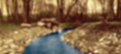 PineTreeBrook 1906 web_HDR.jpeg