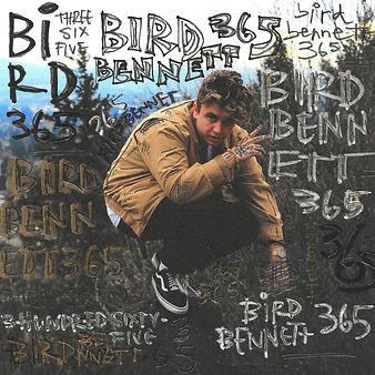 bird5000.jpg