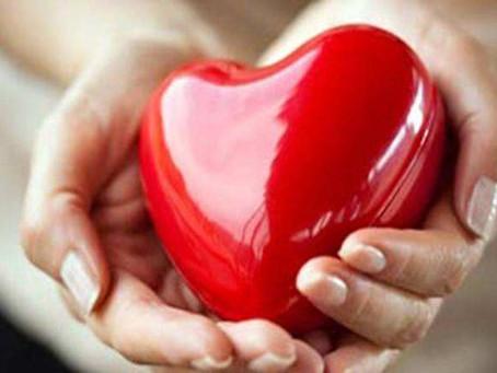 Self Endeavor (Chapter 2 Corridors of The Heart)