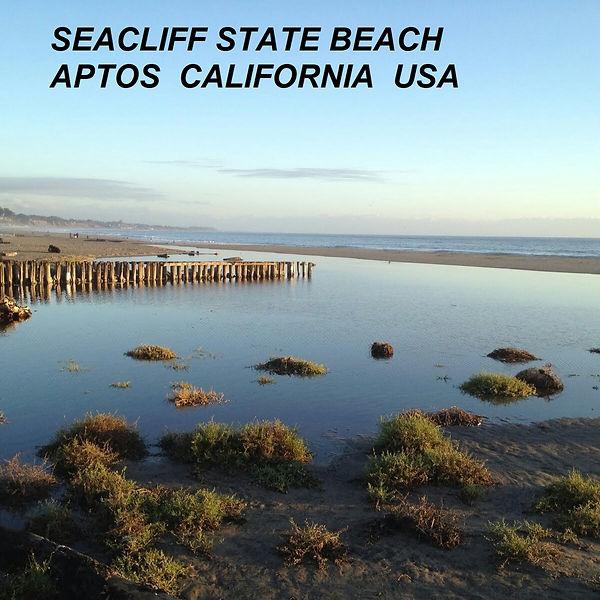 SEACLIFF STATE BEACH.jpg