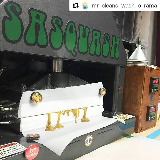 #Repost _mr_cleans_wash_o_rama (_get_repost)_・・・_Fresh frozen whole plant Cookies and Cream hash ros