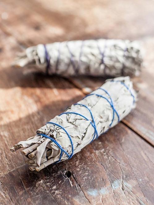 White Sage Smudge Bundle - 4 in