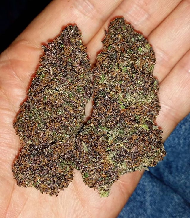 When the well runs dry who's left_ #purp