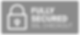ssl-secure-checkout-trust-badge-icon.png