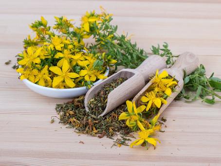 Comment préparer une tisane de manière traditionnelle, à la façon d'un herboriste ? 🌿