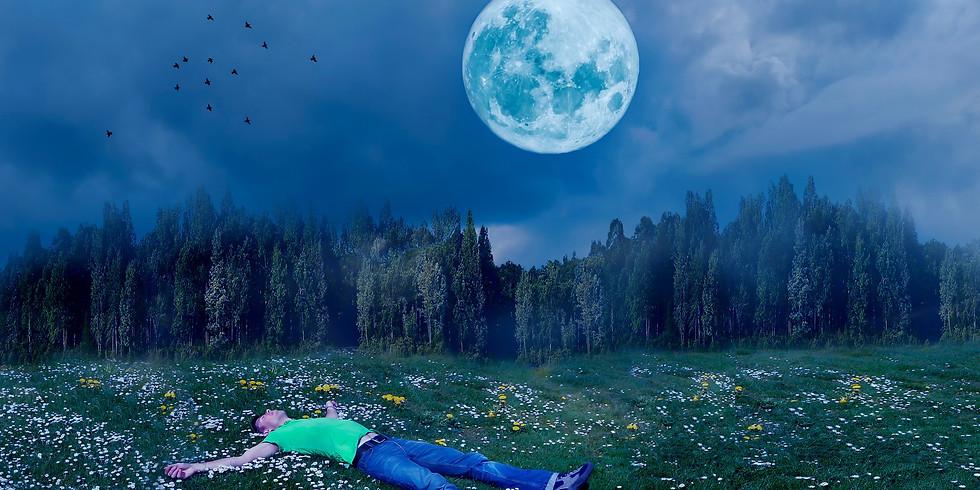 Dormir comme un bébé grâce aux plantes médicinales
