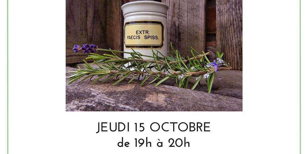 Atelier Initiation à l'herboristerie & dégustation d'infusions Botaniste en herbe dans le salon de thé Entithé