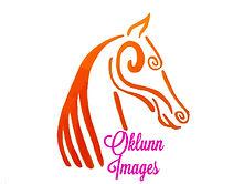 Final Oklunn Logo Pdf.jpg