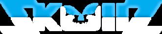 skullz-gear-logo-white-blue-4288w.png