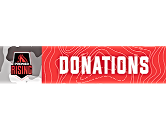 rising donations panel 256.png