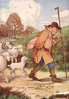 Shepherd with his flock of sheep.