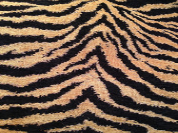 F-06 Antique gold black tiger