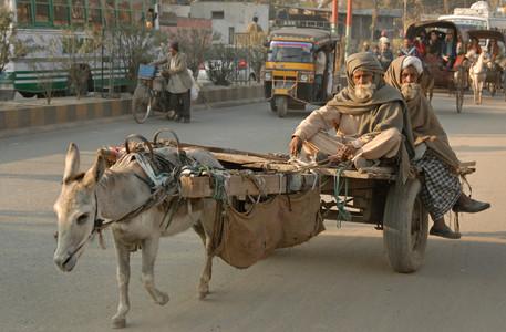 Streets of Amritsar, on way to Golden Temple, Imdia.