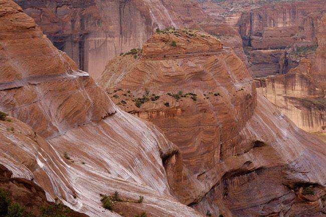 Canyon de Chelly Rain