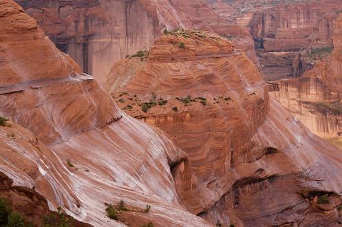 Wet rain, Canyon de Chelly