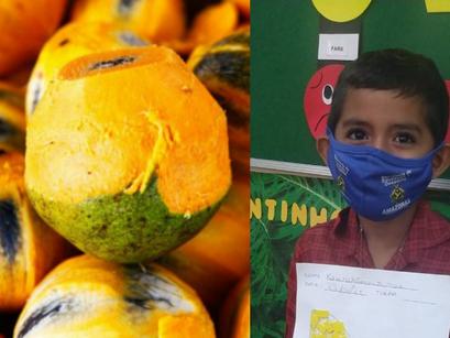 FVS-RCP investiga o surto com 30 casos de contaminação após ingestão de tucumã, em Manacapuru