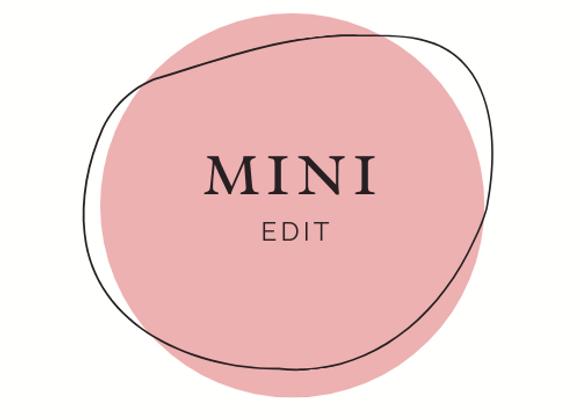 Online Shop - Mini Edit