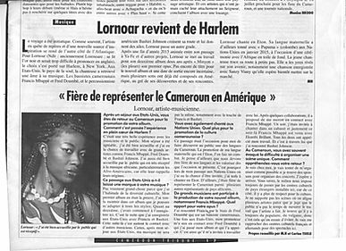 Article du cameroon Tribune du 28 janvier 2016