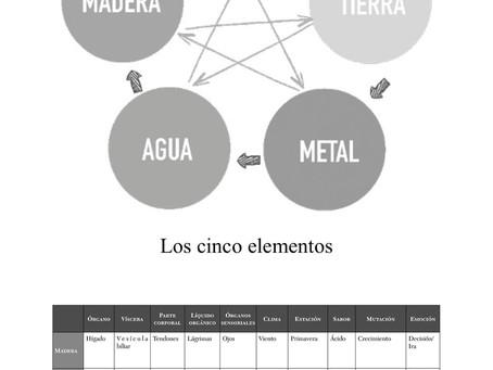 MTC, órganos, emociones. Funcionamiento de los 5 elementos.