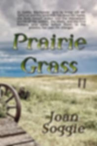 My Saskatchewan historical novel relased January 2020 by BooksWeLove Publishing