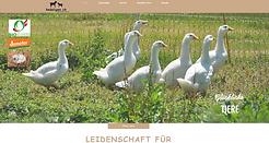 Knüsligen-Referenz-Knüsligen-Website-mit