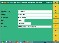 datos vehiculos