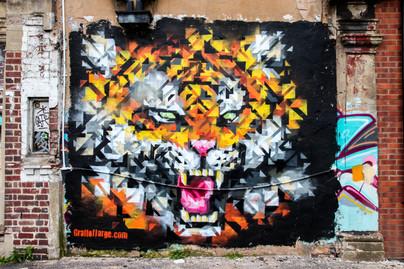 Graffolflarge