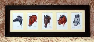 Five-part Horse Portrait